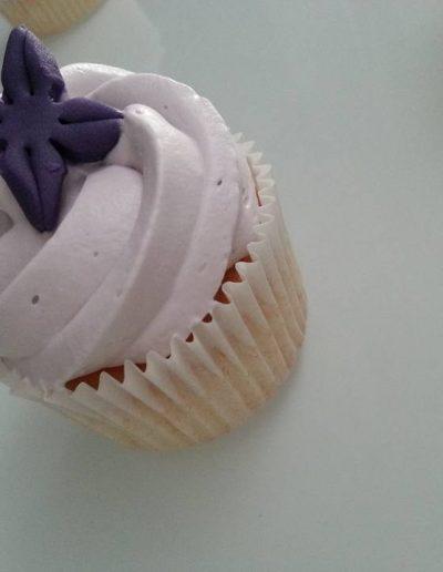 Cupcake Roubaix